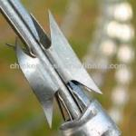 electric dipped galvanized razor barbed wire widely used for security-SHJ1