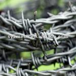 high quality low carbon Barbed Wire Coil-
