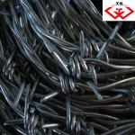 Barbed Wire (Good quality-Manufacturer)-tyd-01