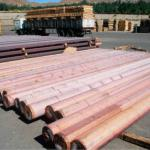 copper billet-ETP-Cu: 50-400 ppm