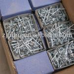 Galvanized Cement Nails-A11-1
