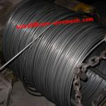 low carbon steel wire rod/iron rod-cwx-wr01