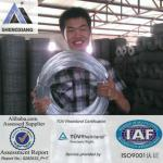 ISO9001 TUV certifacation Galvanized iron wire for binding wire/ GI wire-Lucasi GI wire -1