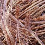 supplying Copper scrap-99.9